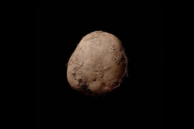 Fotografia ziemniaka sprzedana za okrągły 1 mln euro