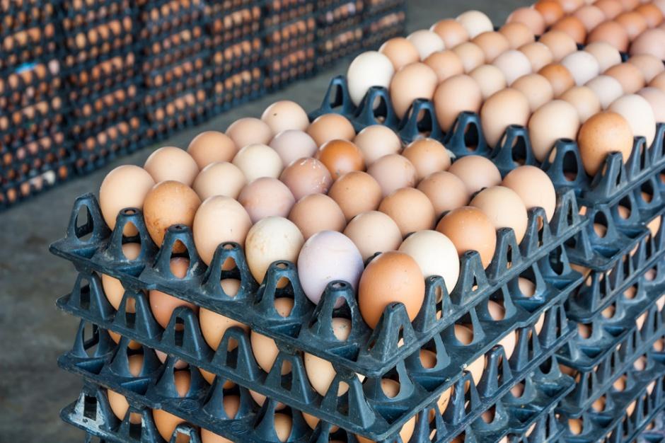 Duże spadki cen jaj spożywczych