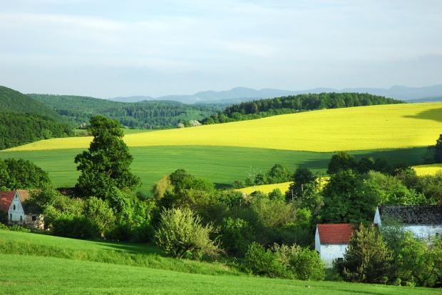 ANR sprzedała 77 tys. hektarów ziemi w 2015 roku