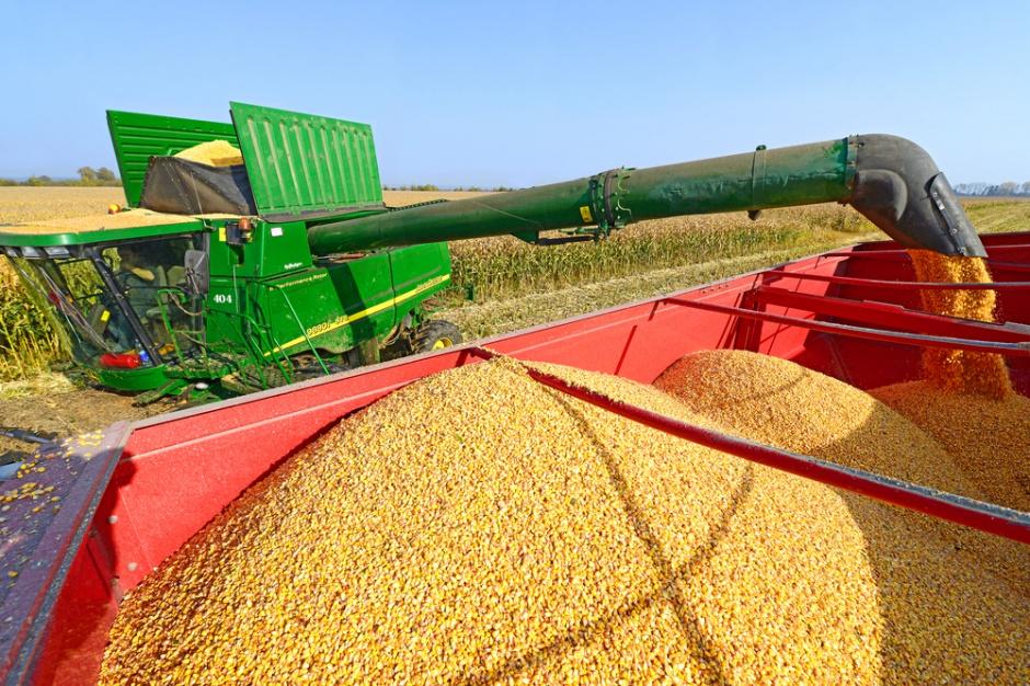 Ukraina spłaci dług wobec Chin eksportując kukurydzę