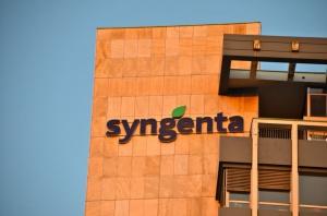 Chińska spółka chce kupić Syngentę