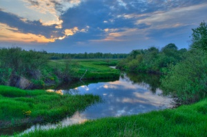 Inwestycje w gospodarstwach sadowniczo-ogrodniczych na obszarach Natura 2000