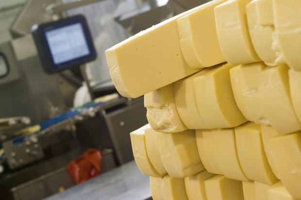 Rośnie eksport twarogów oraz serów niedojrzewających