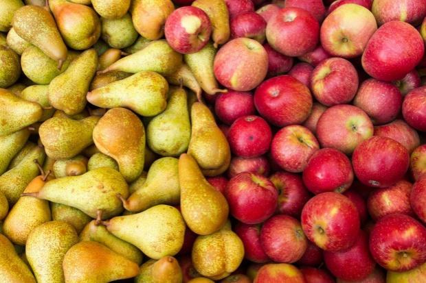 Niższe zapasy jabłek w UE