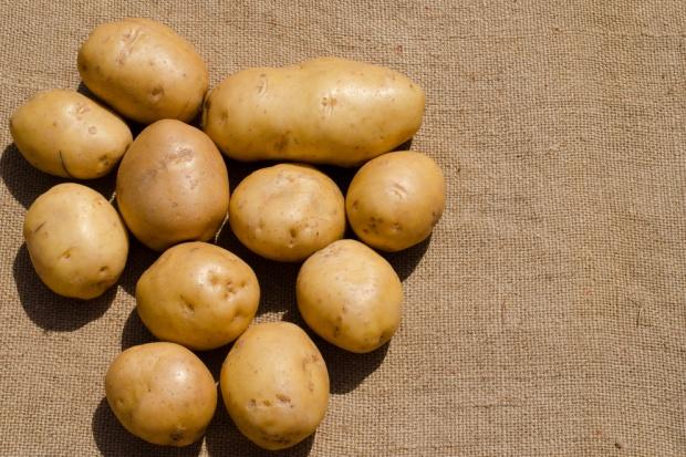 Spadają ceny ziemniaków, rośnie import
