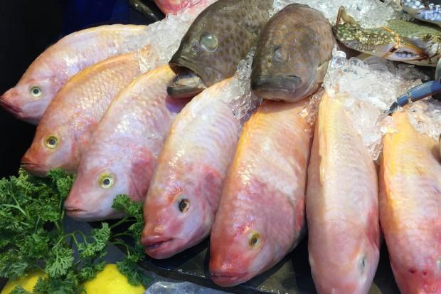 Nowoczesne technologie - nadzieja branży rybnej