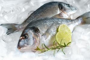Eksport ryb ponownie w górę. O 11,4 proc.