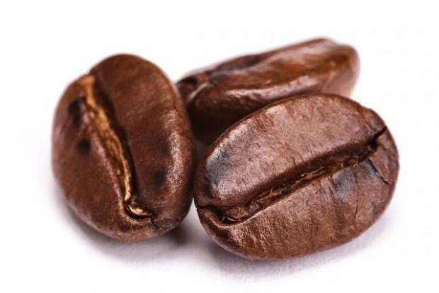 Plony kawy w Brazylii są zagrożone