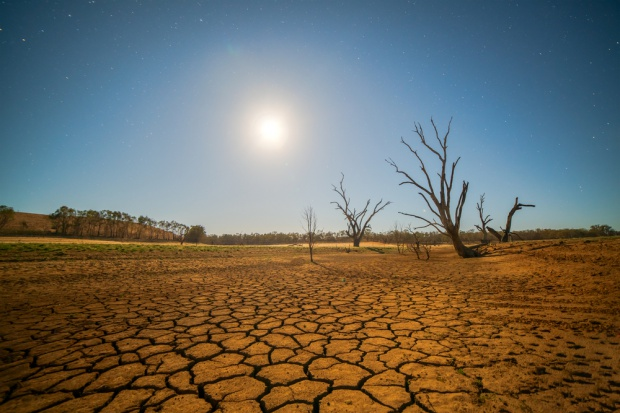 Wpływ globalnego ocieplenia na dietę ? 500 tys. zgonów w 2050 r.