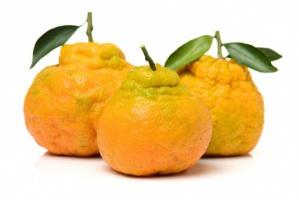 Brzydkie pomarańcze coraz popularniejsze w Chinach