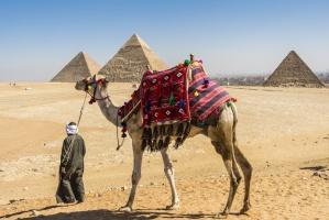 Polskie mięso pojedzie do Egiptu