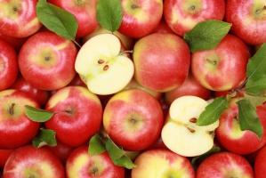 TRSK prosi rząd o pomoc w eksporcie jabłek do Rosji
