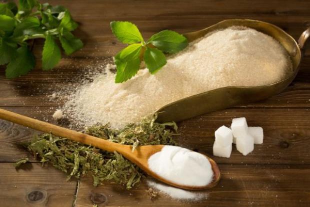 Barry Callebaut będzie używać stewię w czekoladach; rynek stewii będzie mocno rósł