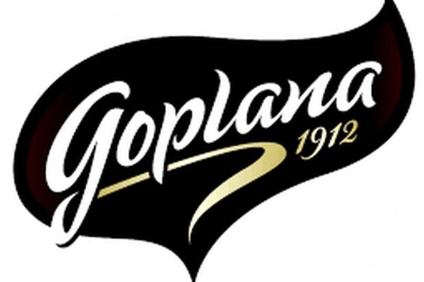 Przyszłość poznańskiej Goplany pod znakiem zapytania
