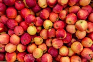 Czy sadownikom uda się zagospodarować sporą nadwyżkę jabłek?