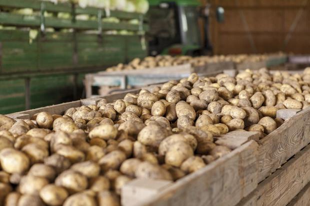 Na czas, na pewno - zarządzanie łańcuchem dostaw dla branży spożywczej