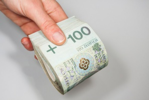 BOŚ: Duży spadek przychodów i zysku netto w 2015 r.