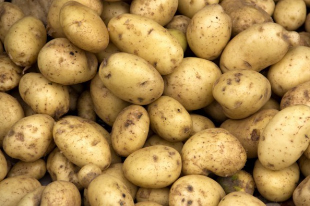 Ceny ziemniaków w Polsce nadal są niskie