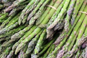 Niskie temperatury opóźnią rozpoczęcie kampanii zbiorów szparagów w Hiszpanii