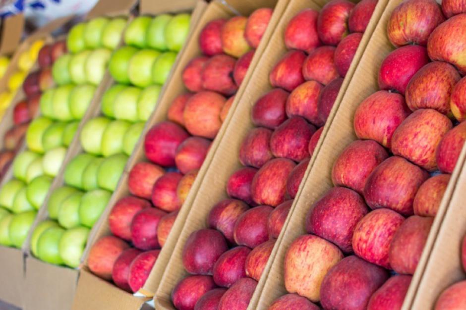 Ukraina nadal ogranicza import jabłek. Głównie z Polski