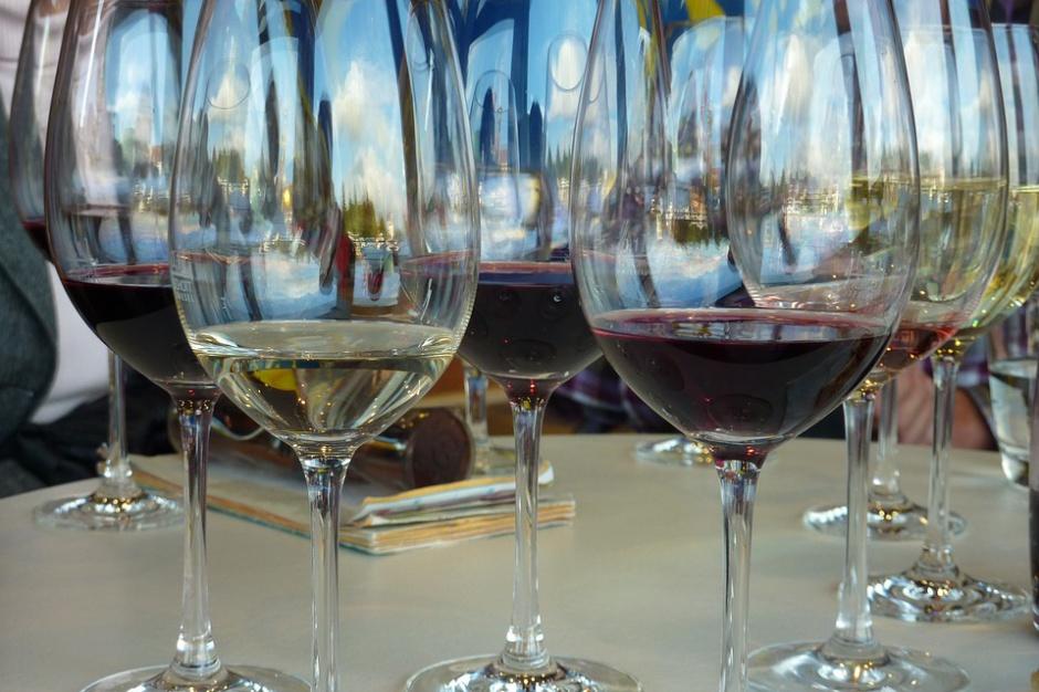 Możliwości wykorzystania owoców krajowych do produkcji win owocowych