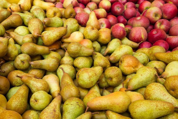 W Rosji brakuje gruszek i jabłek
