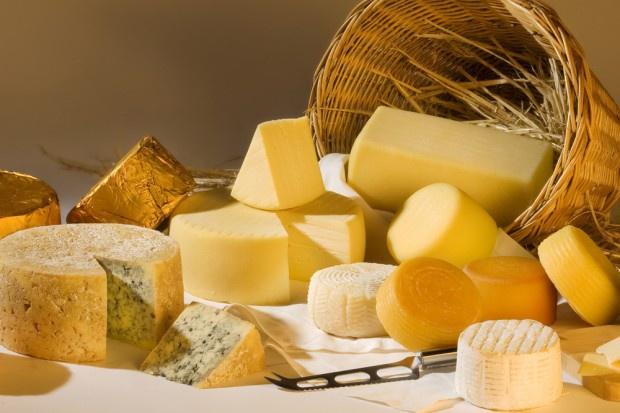 Rekordowy import serów w 2015 r.