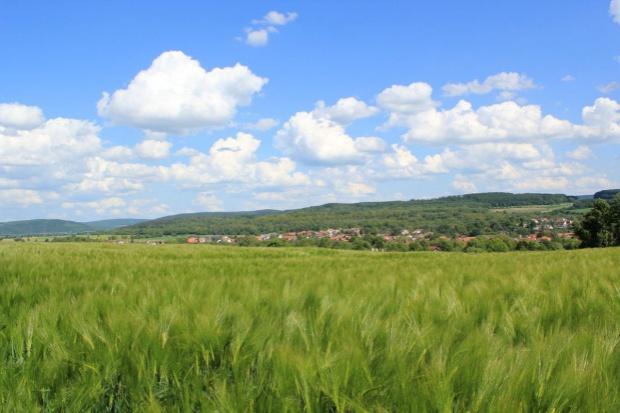 Sejm zakończył prace nad ustawą w sprawie obrotu ziemią