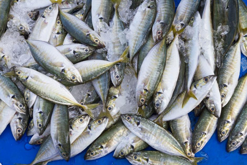 Niewielki spadek produkcji ryb i owoców morza