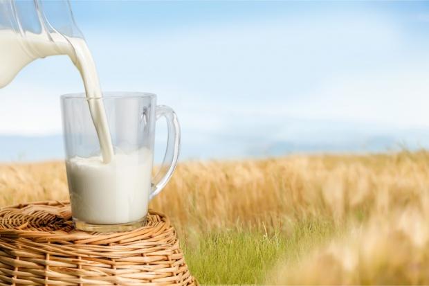 Dyrektor Polskiej Izby Mleka reprezentuje polskie mleczarstwo w Chinach i Japonii