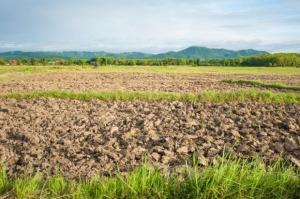 KRIR chce zmian w ustawie o sprzedaży ziemi