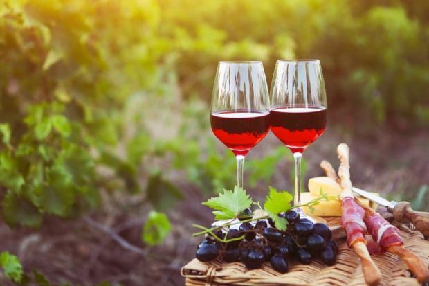 Lubuscy winiarze zapraszajÄ… na weekendy otwartych winnic