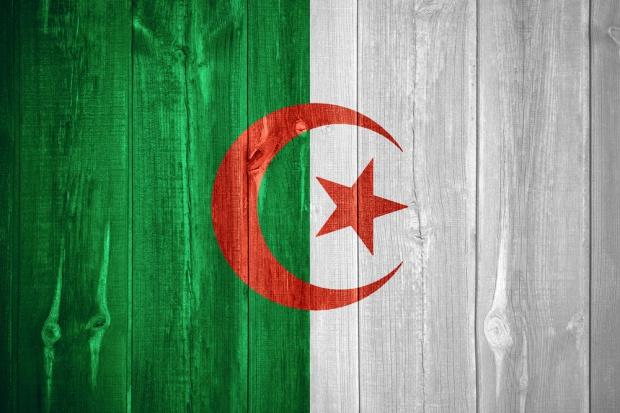 MR: Algieria jest dla Polski rynkiem niewykorzystanych szans