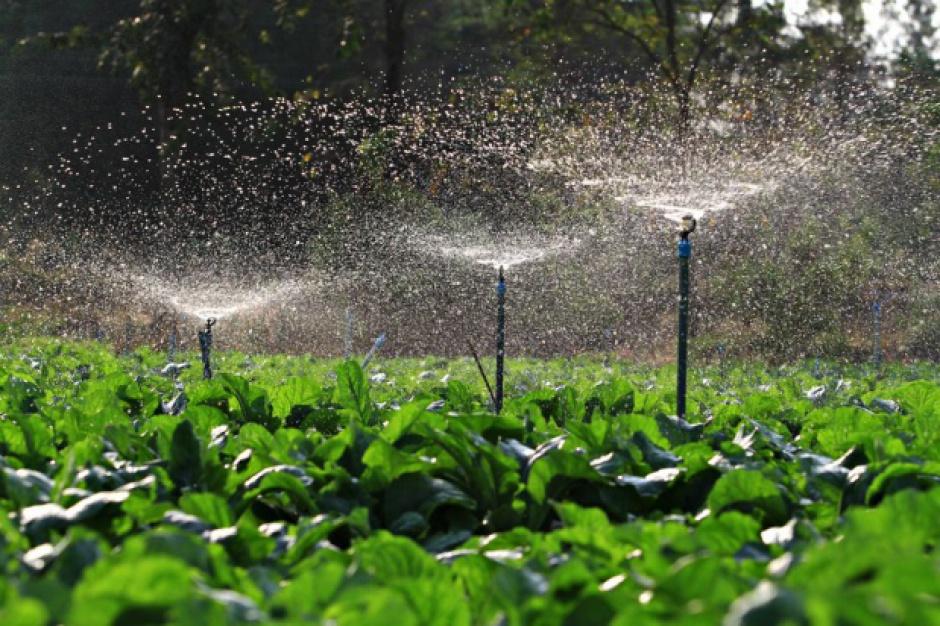 Izby rolniczeprzeciwko braku konsultacji projektu prawa wodnego