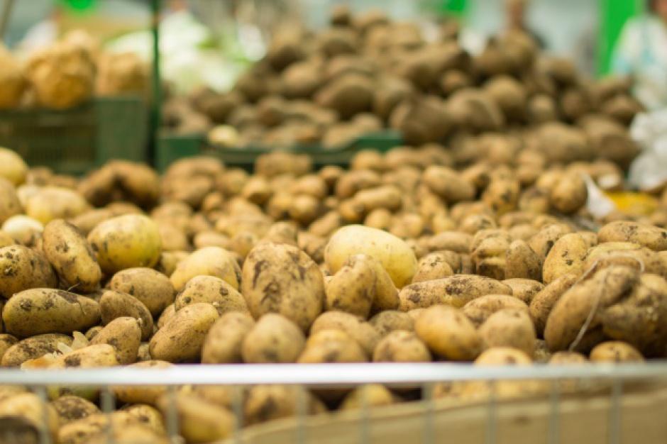 Ceny ziemniaków w Polsce w obrocie hurtowym są o ok. 80 proc. wyższe niż przed rokiem