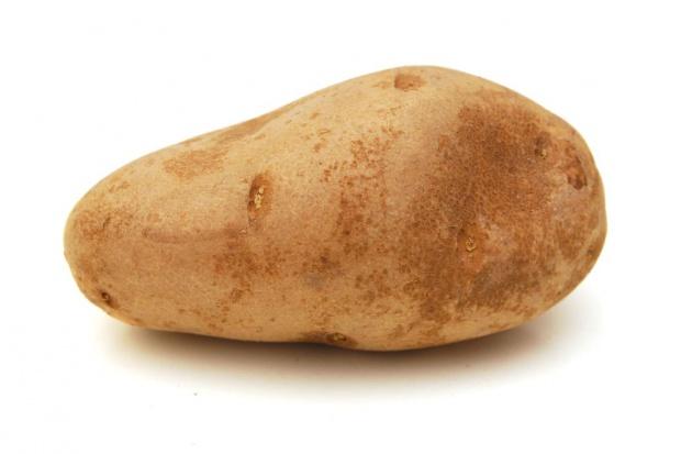 Wyhodowano największego ziemniaka na świecie - o wadze blisko 5,5 tony