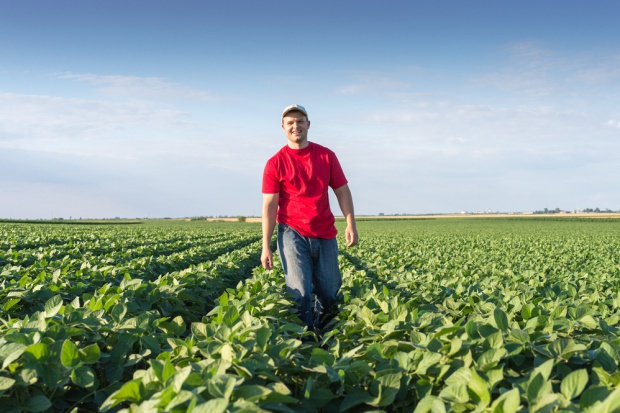 Rolnicy złożyli ponad 21 tys. wniosków na modernizację gospodarstw