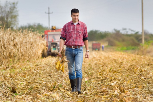 Resort rolnictwa opracował projekt ustawy o spółdzielniach rolników