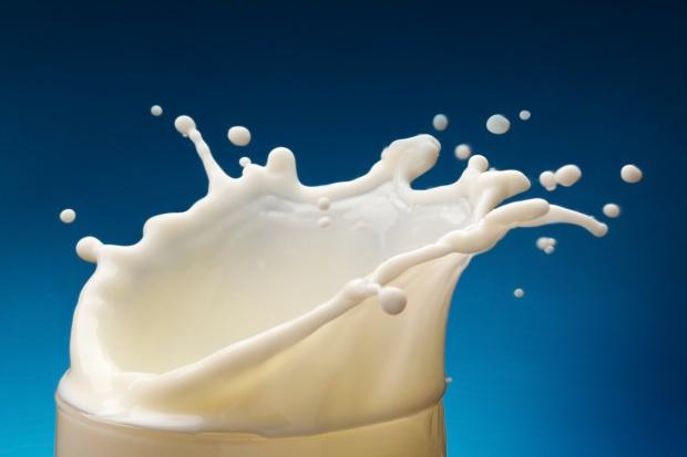 Polska zabiega w UE na indywidualne umorzenia kar za przekroczenie kwot mlecznych