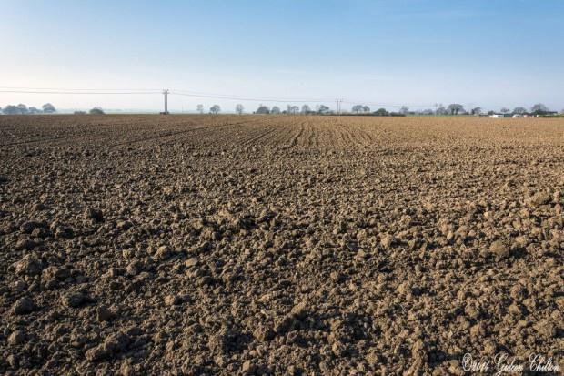 Ustawa o handlu ziemią spełnia oczekiwania rolników