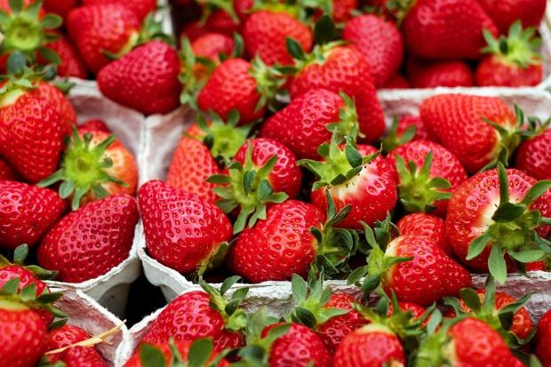 Uliczni sprzedawcy truskawek wykorzystują niewiedzę klientów