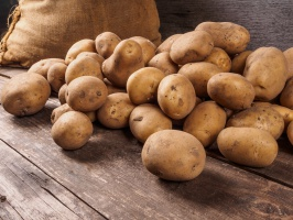 Zbiory ziemniaków maleją, ale Polska w czołówce europejskich producentów