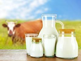Hogan: Producenci powinni wziąć odpowiedzialność za produkcję mleka