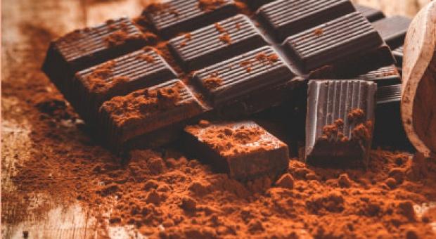Lista największych producentów kakao, czekolady i lodów - nowa edycja