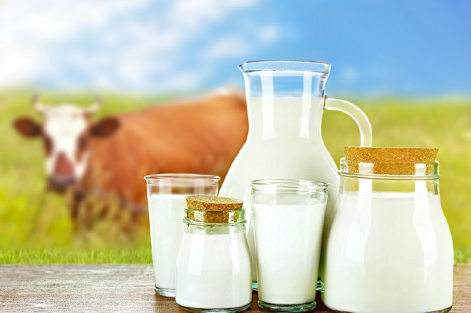 Co z karami za nadprodukcję mleka?