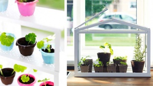 W restauracjach IKEA uprawiane będą ogrody warzywne
