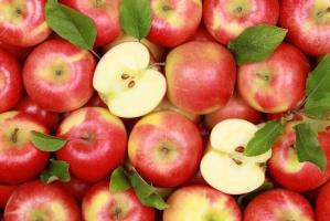 Polskie jabłka podbijają białoruski rynek