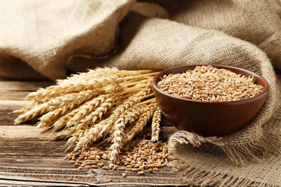 USDA: wyższe prognozy produkcji pszenicy i zbóż paszowych
