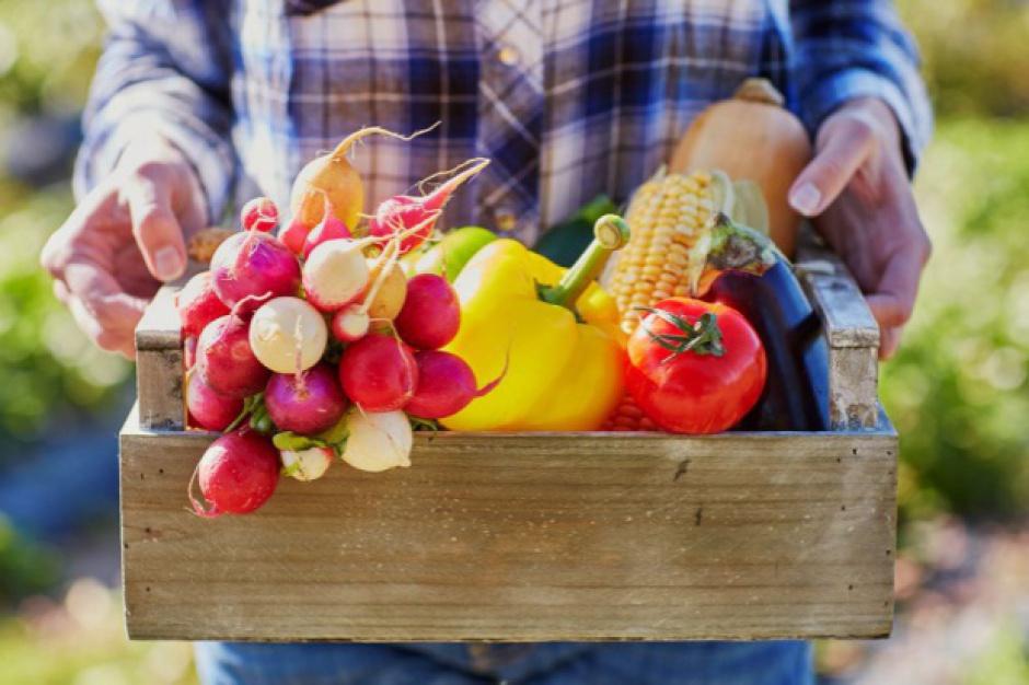Bronisze: Większość warzyw tańsza niż rok temu