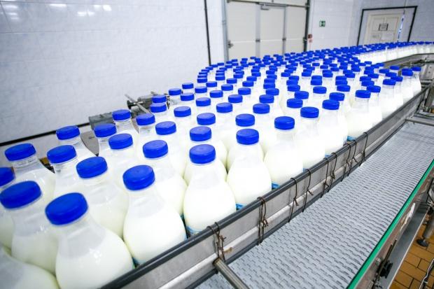 Jeronimo Martins uruchomi mleczarnię w 2017 roku